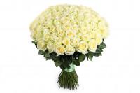 101 нежная белая роза