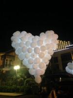 Запуск сердца на 190 шаров